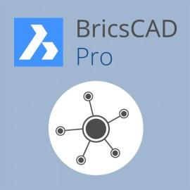 Netzwerk BricsCAD V18 Pro ALL-IN